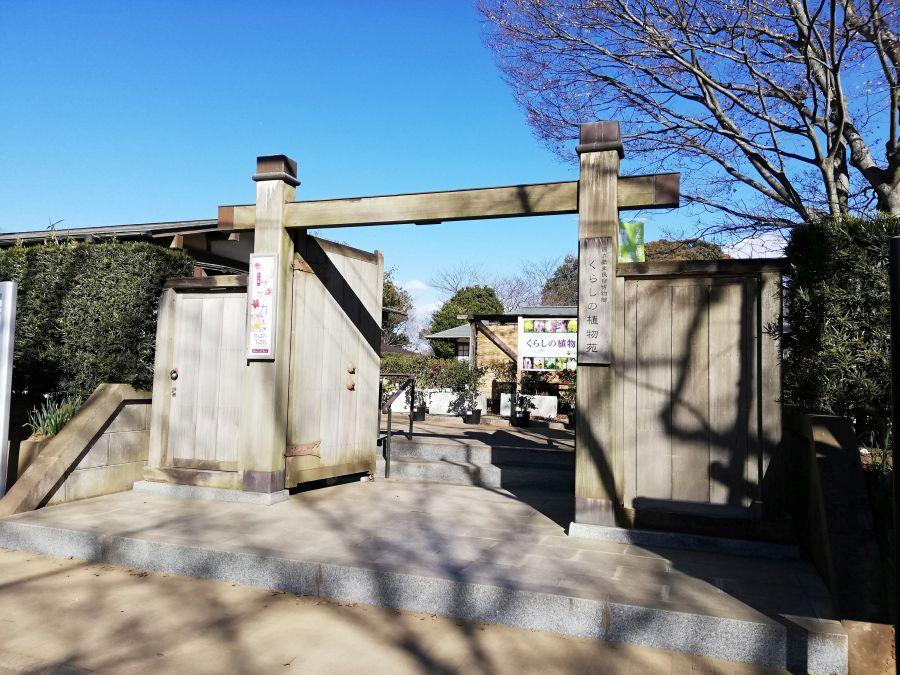 くらしの植物苑 佐倉市 国立歴史民俗博物館
