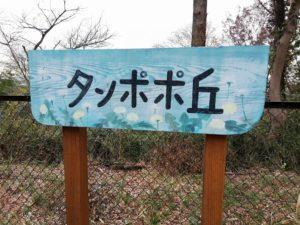 バンプオブチキンの歌のモチーフやミュージックビデオの撮影地にもなっているタンポポ丘(宿内公園)