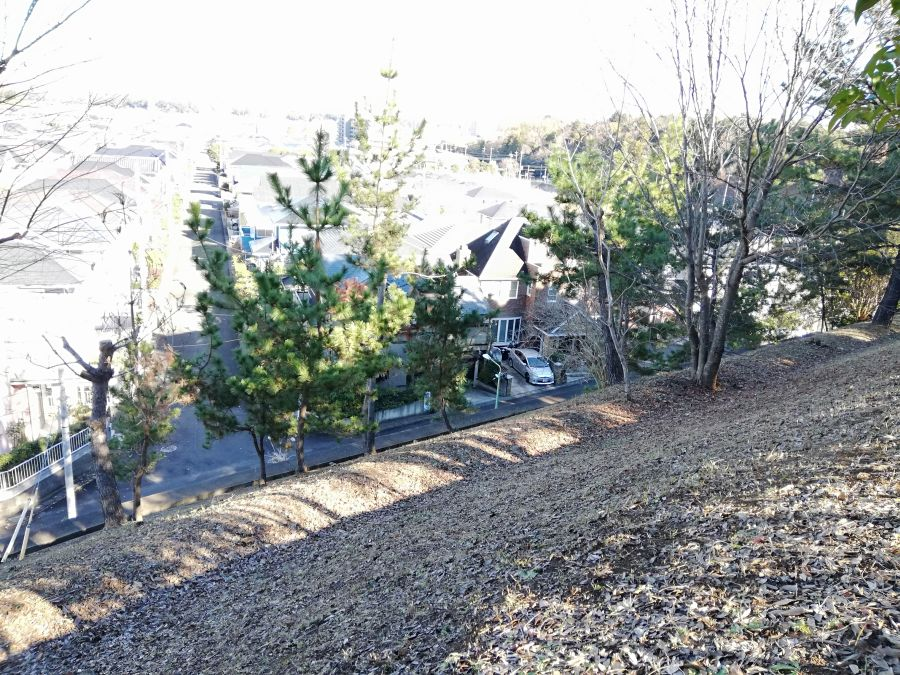 大崎台公園の斜面