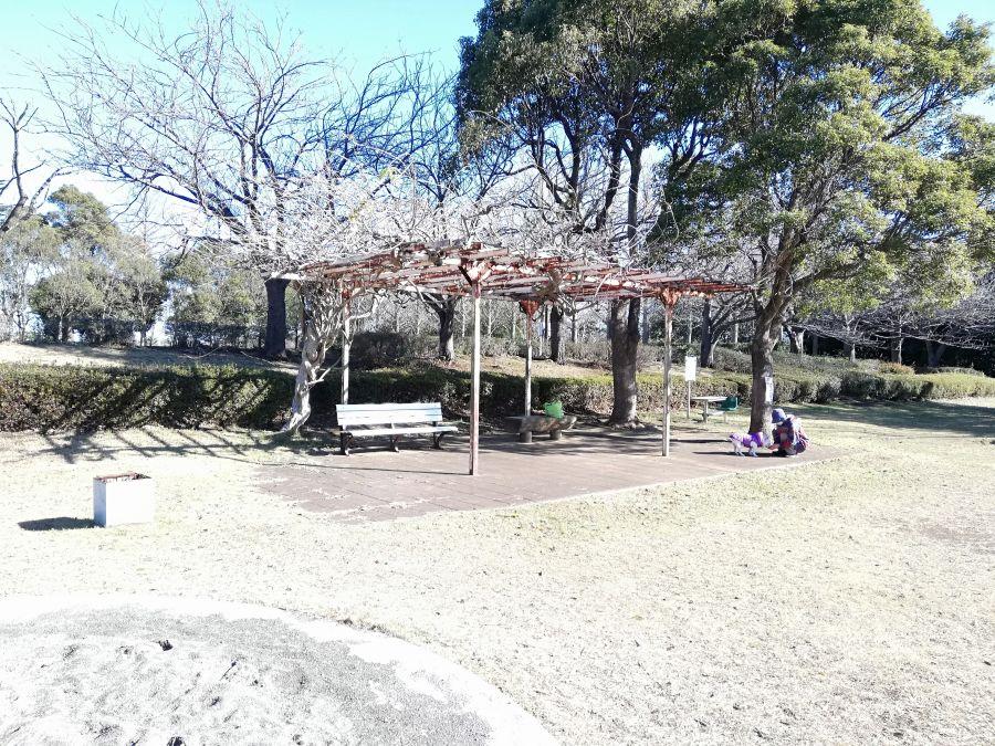 大崎台公園のベンチ