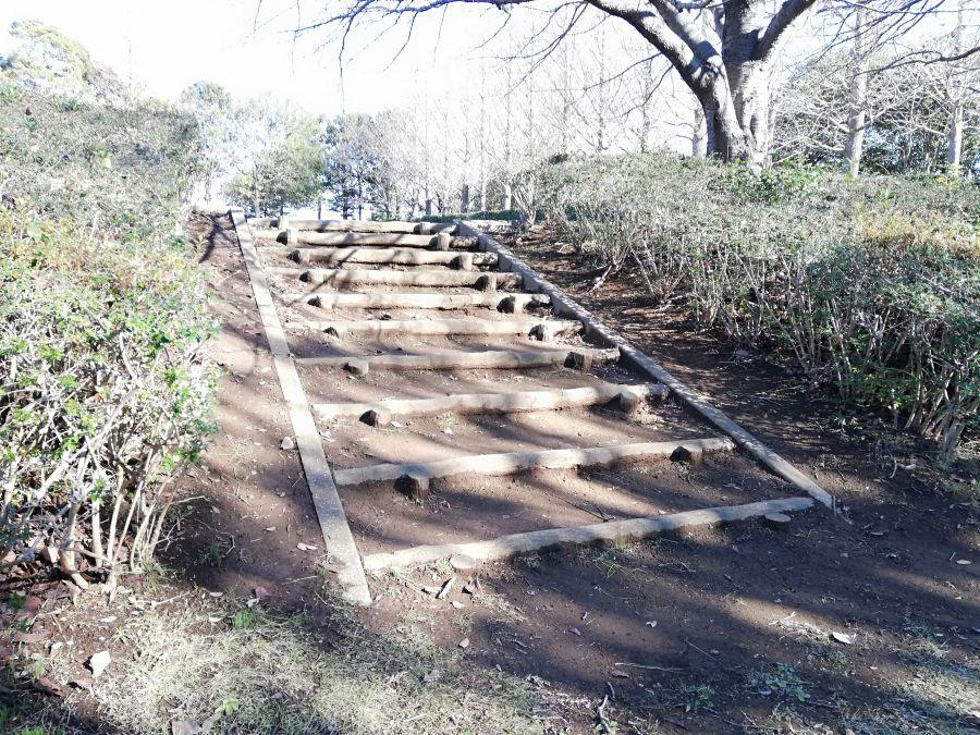 大崎台公園の遊歩道