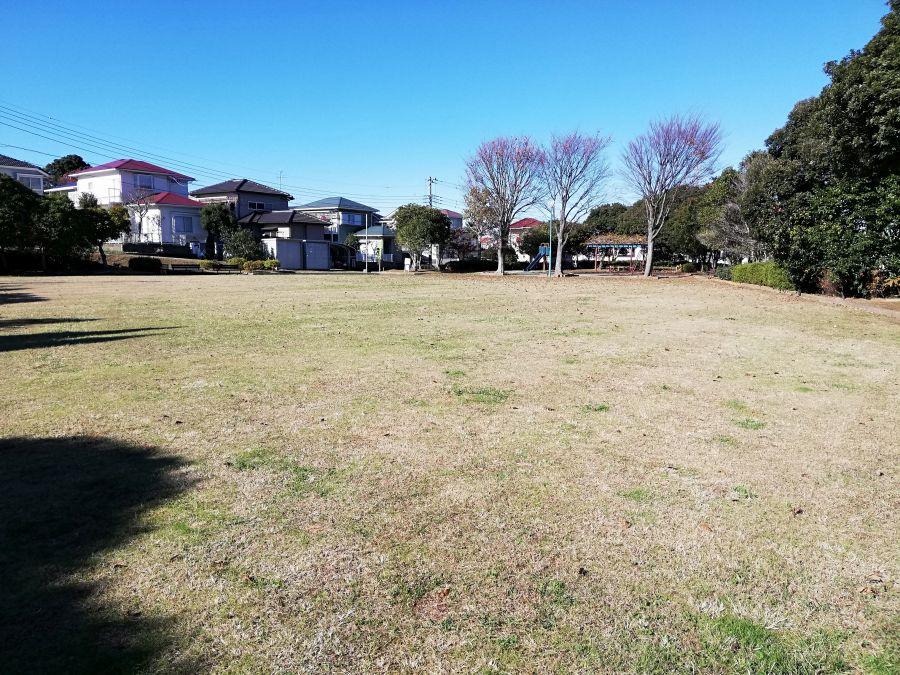 若宮台公園の芝生広場