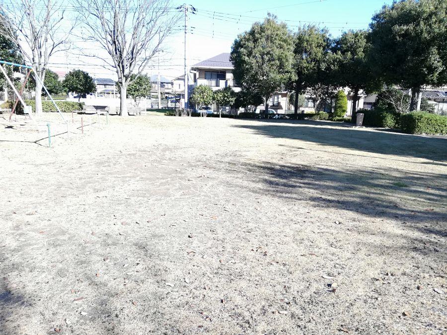 向原公園の広場