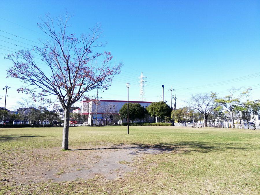 織戸公園の広々広場