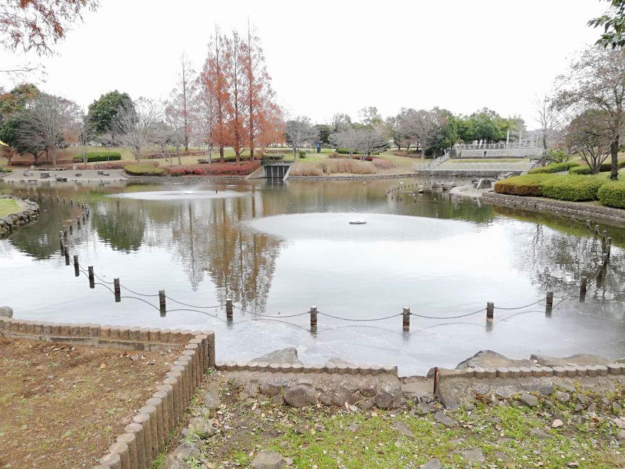 七井戸公園の池