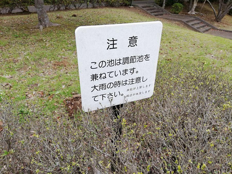 七井戸公園の池は兼調整池