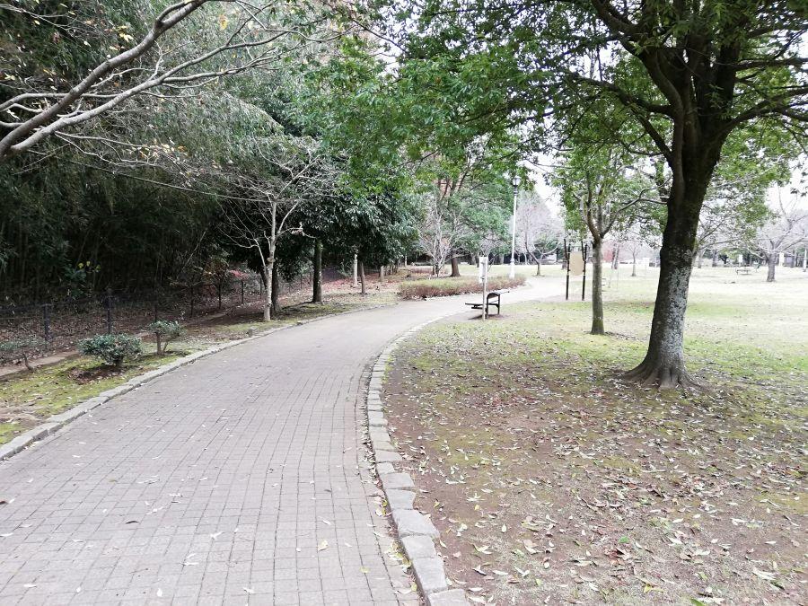 七井戸公園のお散歩道