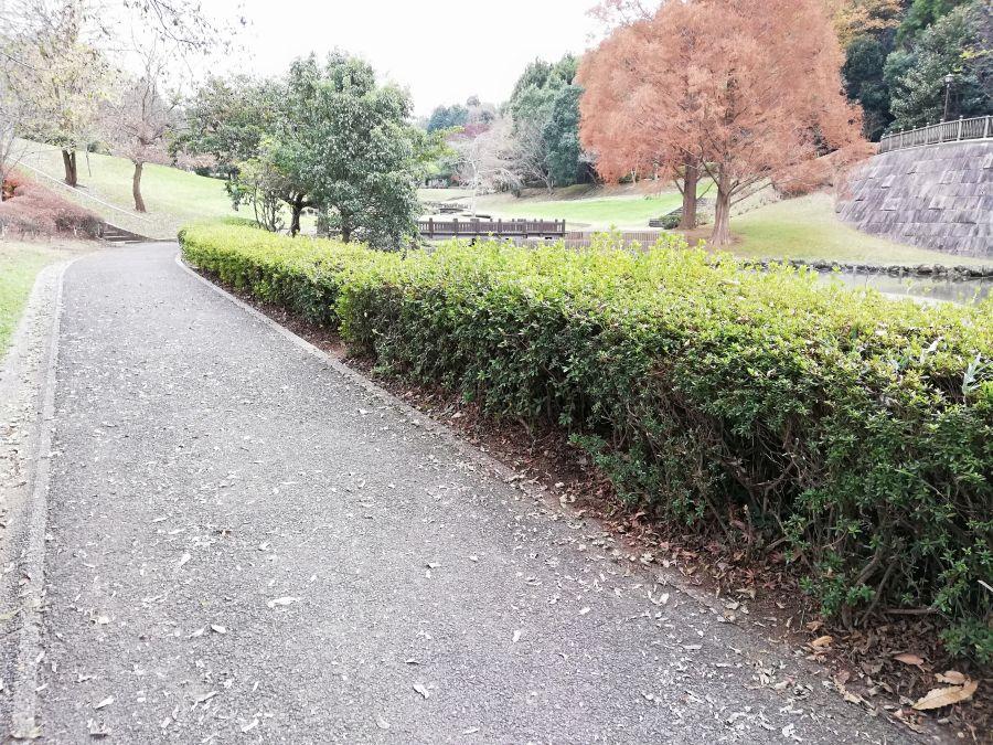 七井戸公園の景色