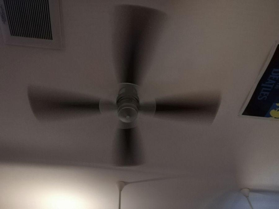 そばカフェ301 天井