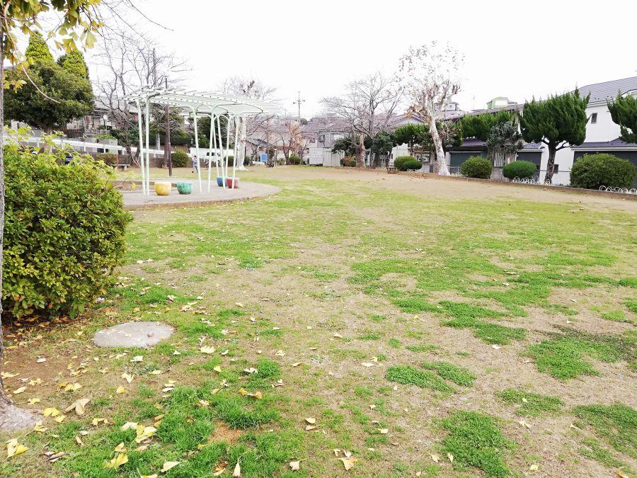 長谷津児童公園の芝生