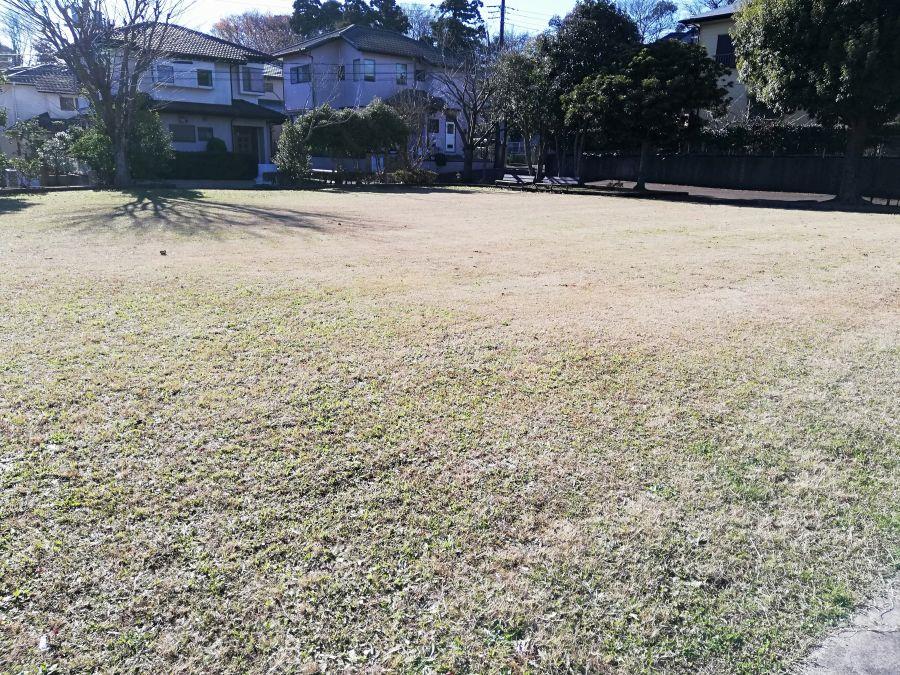 藤治台西公園の芝生広場