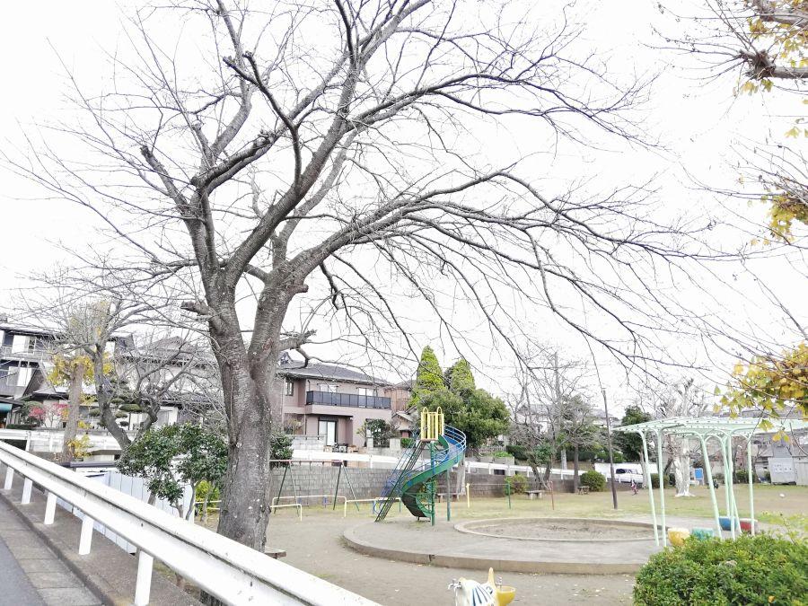 長谷津児童公園の景色