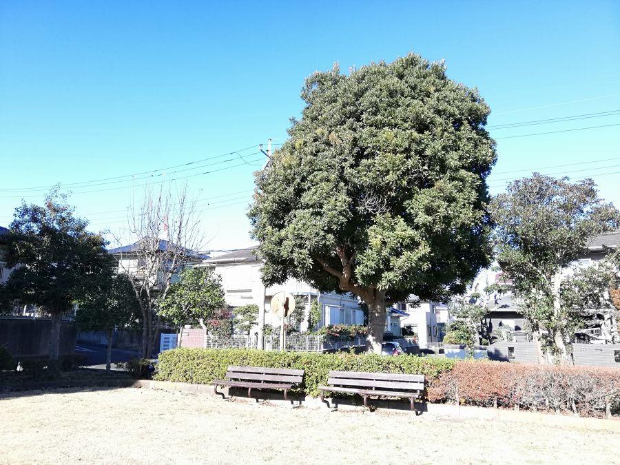 藤治台西公園のベンチ