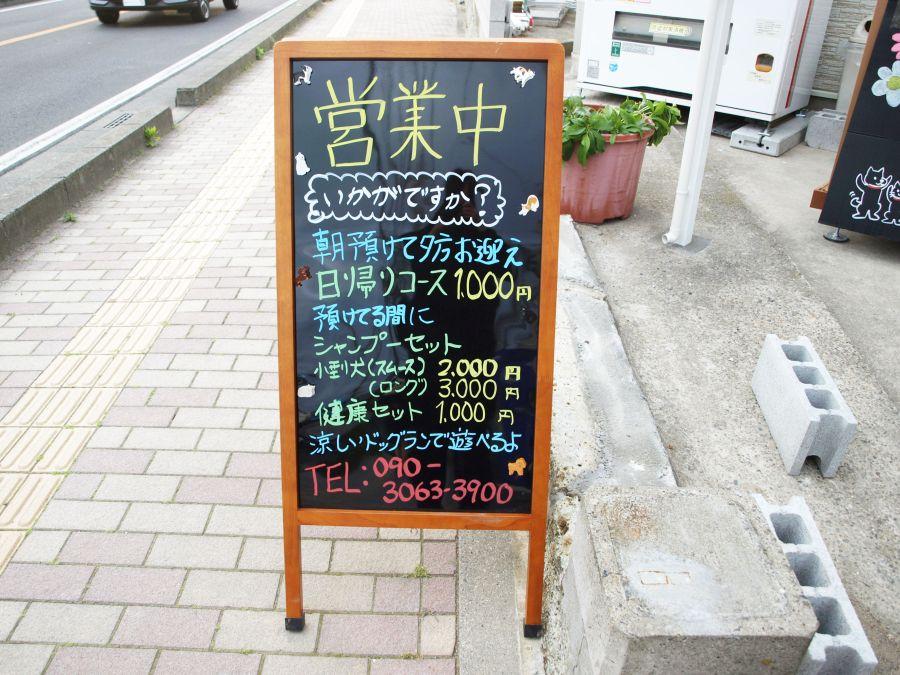 佐倉市 ペットホテルサクラ