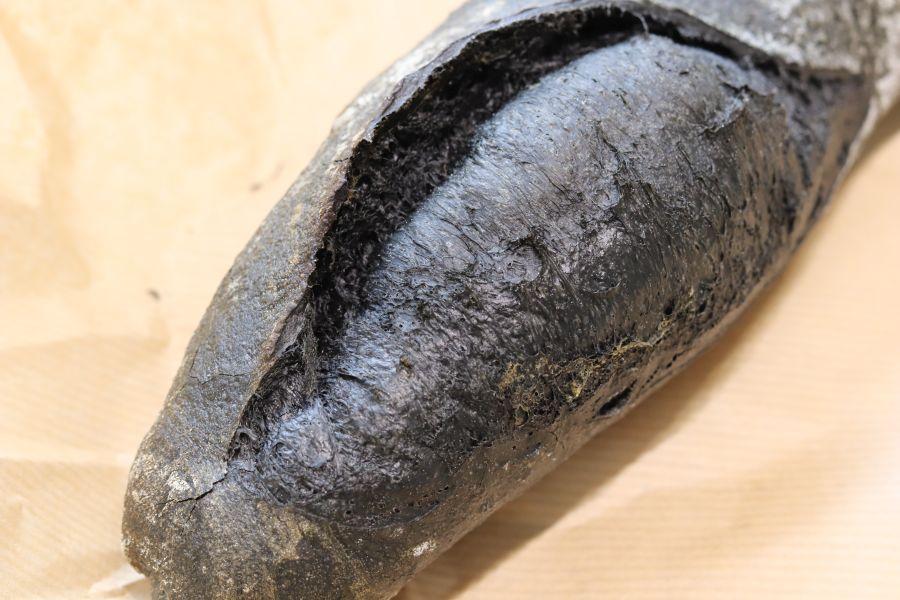 佐倉市 臼井 ベーカリーバンブー 竹炭フランス