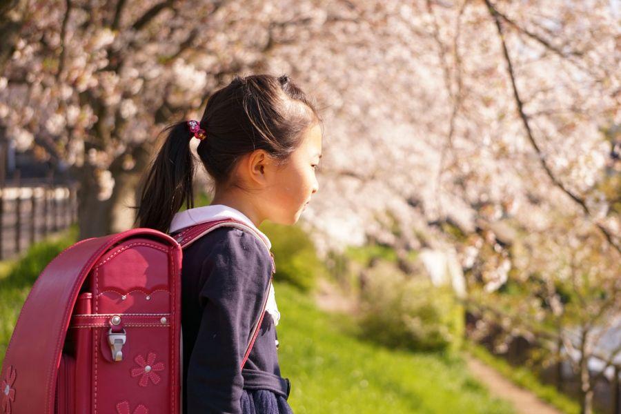 2020年5月26日 佐倉市 小学校中学校再開決定