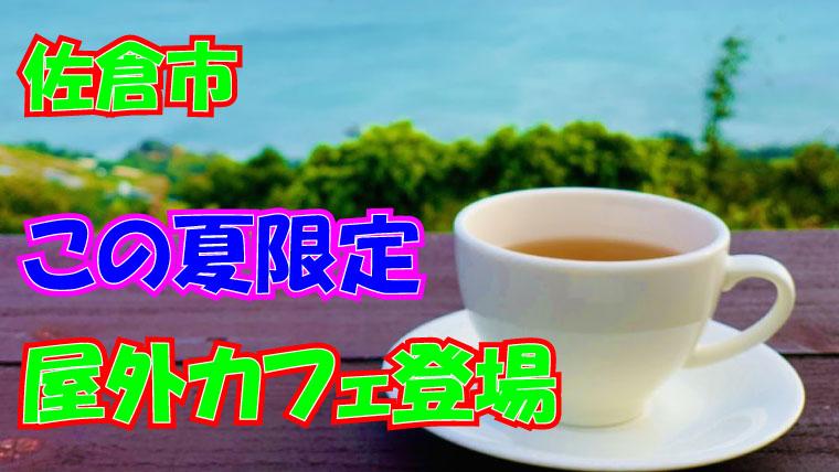 佐倉市 水辺カフェプロジェクト ふるさと広場 アウトドア 夏 2020年