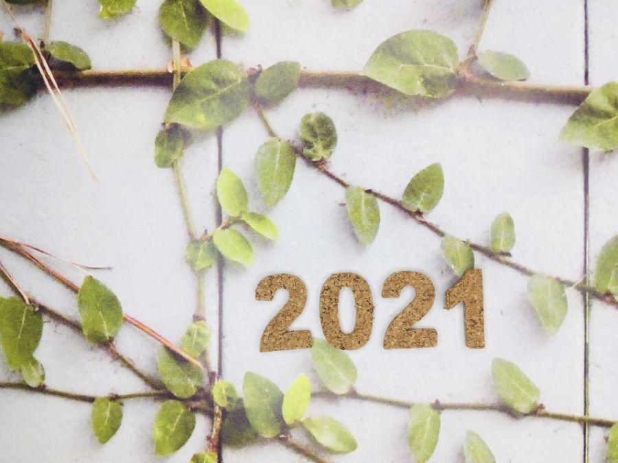 2020年(令和3年)1月11日開催予定 佐倉市の成人式 2021年のイメージ画像
