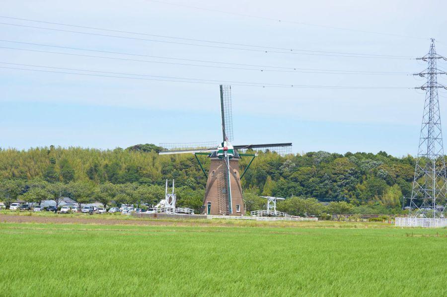 マルシェかしま 風車の周りの水田