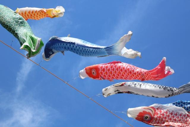 鯉のぼりのイメージ
